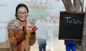 Aprende chino mandarín y taichí gratis en la V región.
